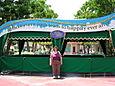 """Aurora at Disneyland under the """"Happy Ever After"""""""