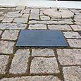 John F. Kennedy Gravesite: 1917-1963