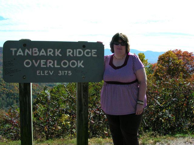 Sunshine in Tanbark Ridge BlueRidgePark 10-24-09