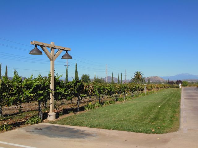 South Coast Winery Resort & Spa: Pictures 741-751